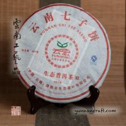 2009 Юн Хун Шэн Тай Пу 8818