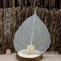 Strainer - banyan leaf