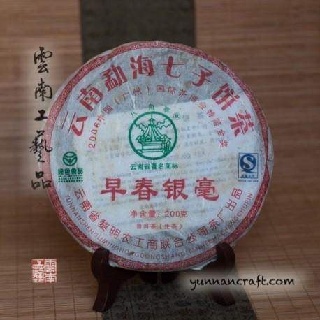 2009 Зао Чун Ин Хао