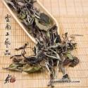 2020 Yue Guang Bai - Arbor