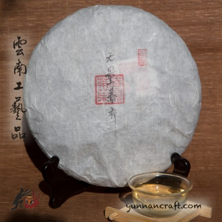 2019 Wuliang Shan - Arbor