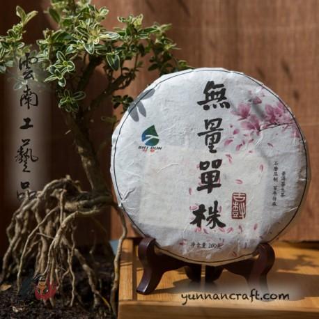 2020 Уляншань Гушу - Дан Чжу