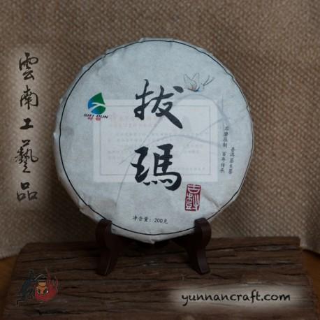 2021 Nannuo Shan Ba Ma - Gushu 200g