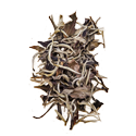 White Tea Selection