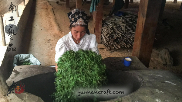 kill green - puerh tea processing