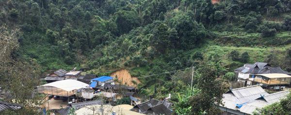 деревня с чайными деревьями