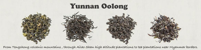 Yunnan Oolong Tea
